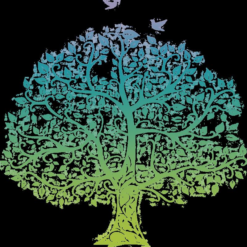 Pluk de vruchten van de levensboom, excursie