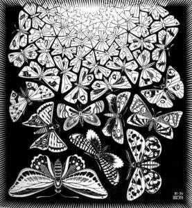 vlinders, transformatie, kennismaking met de theosofie